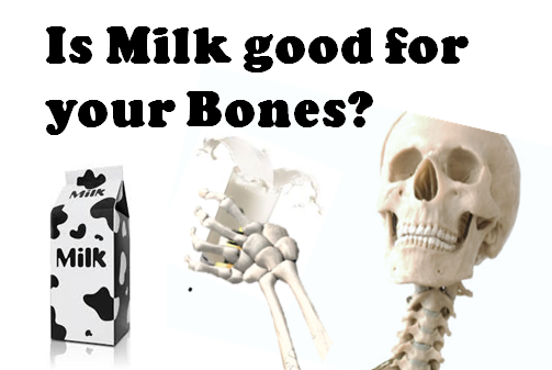 Is-milk-good-for-your-bones